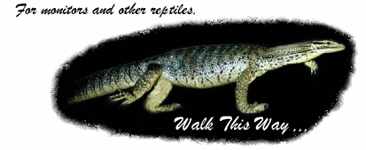 For monitors and other reptiles,  walk this way ...